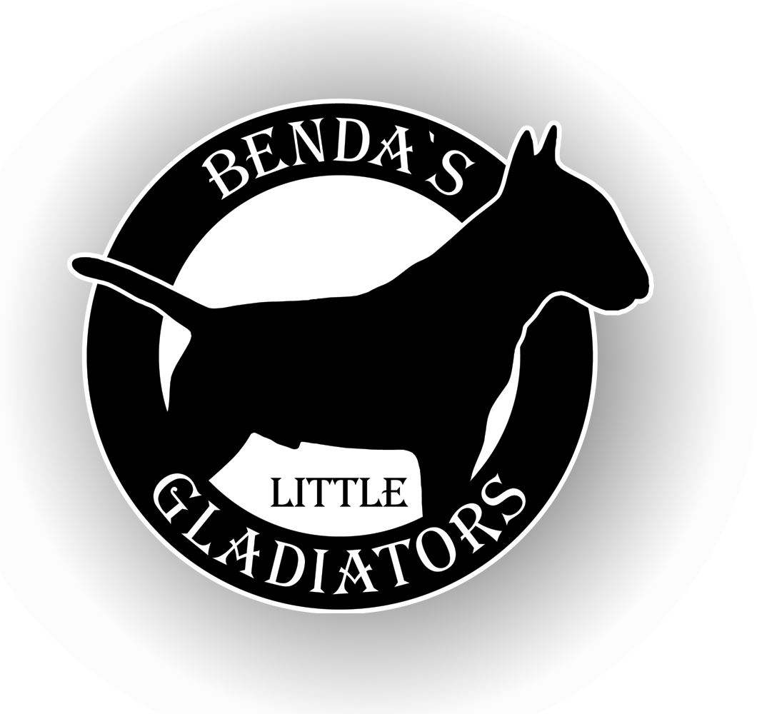 Benda`s Littel Gladiators